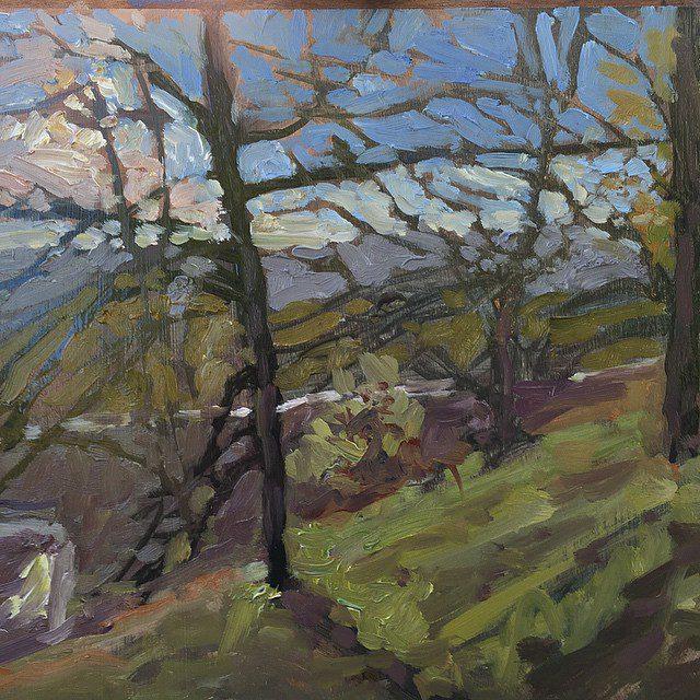 Mount Pleasant sun through the trees
