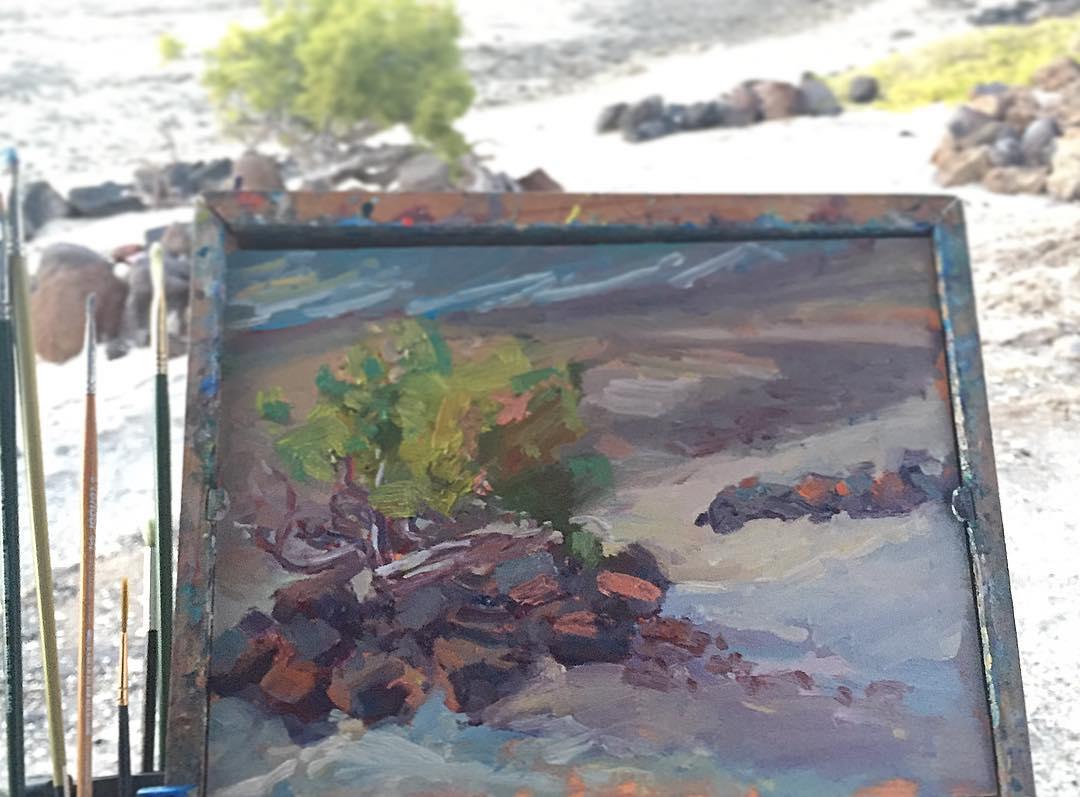 Bush at Playa Santispac