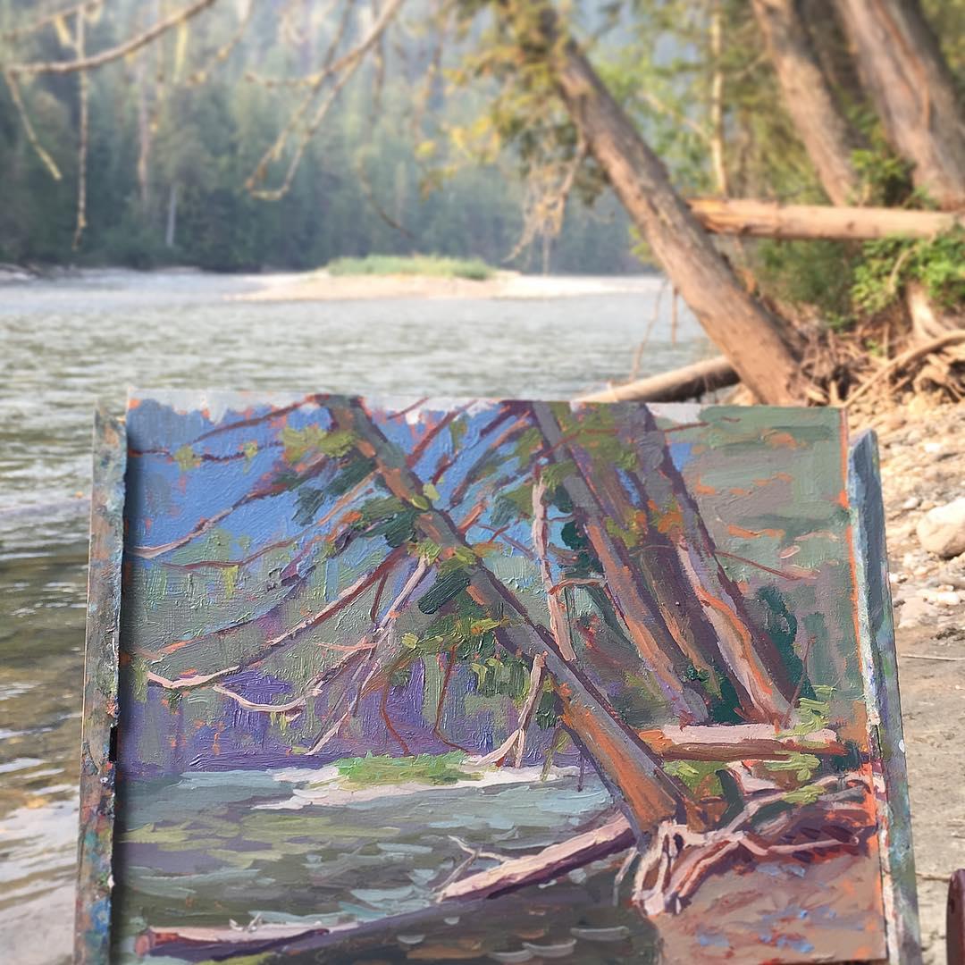 Cedars on Shuswap River