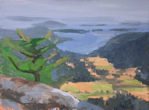 View from Mt. Maxwell, Salt Spring Island